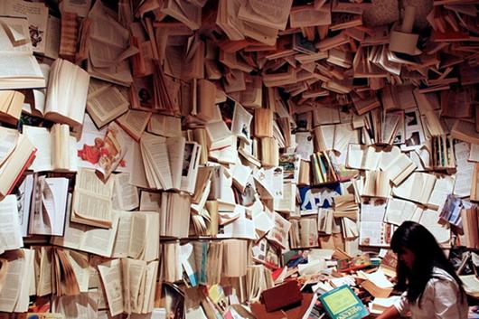 Muito-livro-para-ler